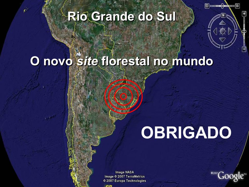 O novo site florestal no mundo
