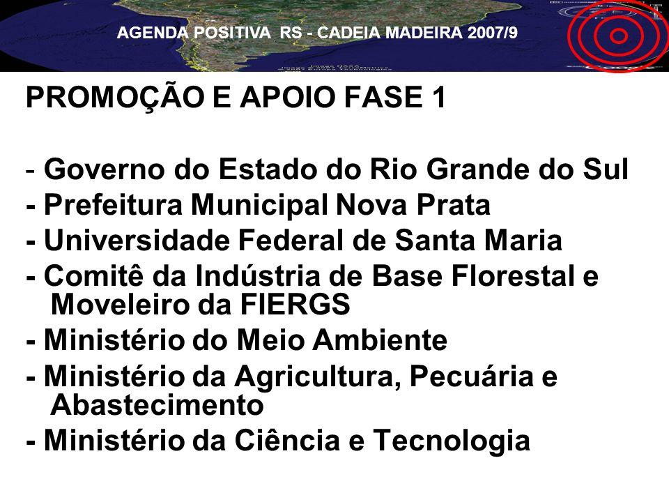 AGENDA POSITIVA RS - CADEIA MADEIRA 2007/9