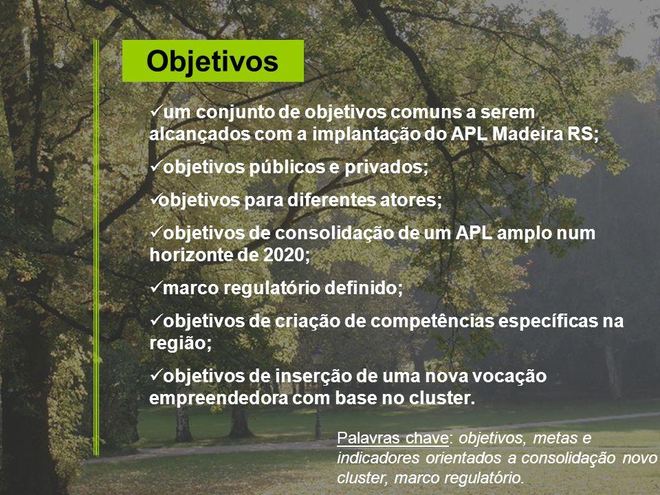 Objetivos um conjunto de objetivos comuns a serem alcançados com a implantação do APL Madeira RS; objetivos públicos e privados;