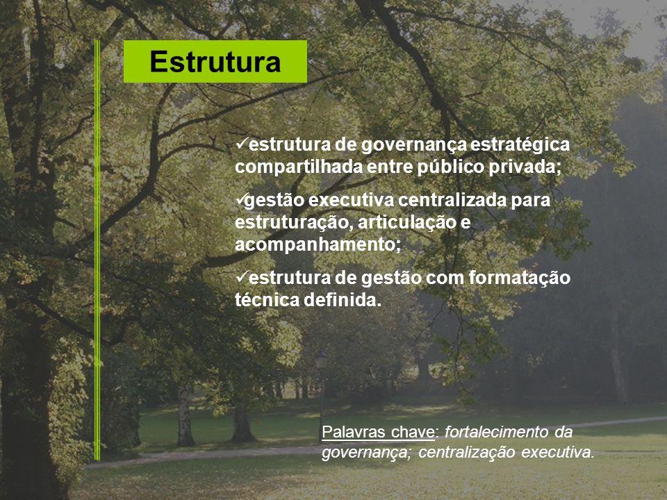 Estrutura estrutura de governança estratégica compartilhada entre público privada;