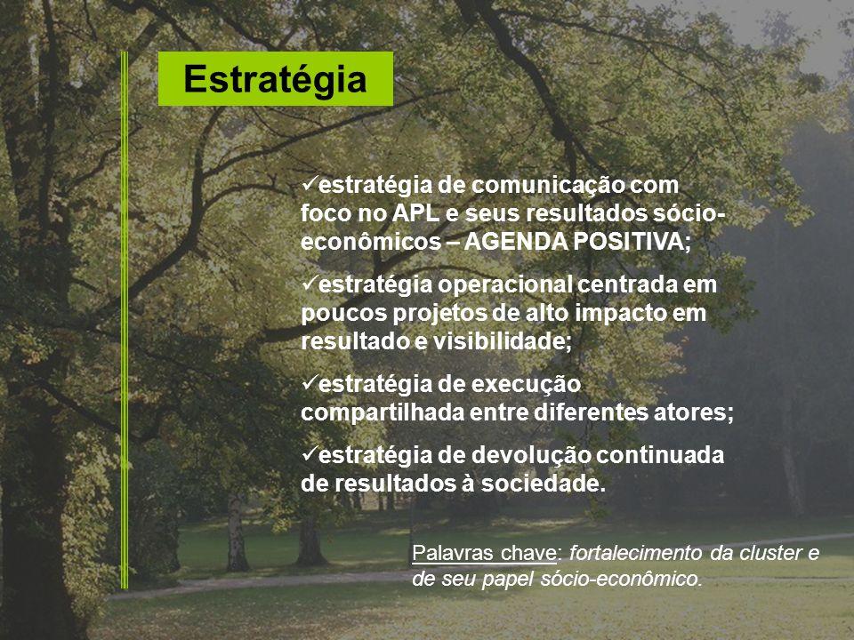 Estratégia estratégia de comunicação com foco no APL e seus resultados sócio-econômicos – AGENDA POSITIVA;