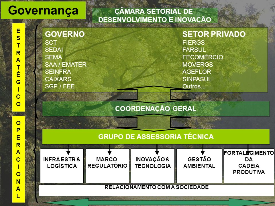 Governança GOVERNO SETOR PRIVADO CÂMARA SETORIAL DE
