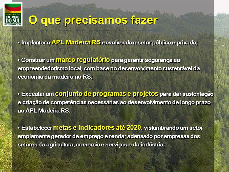 O que precisamos fazer Implantar o APL Madeira RS envolvendo o setor público e privado;