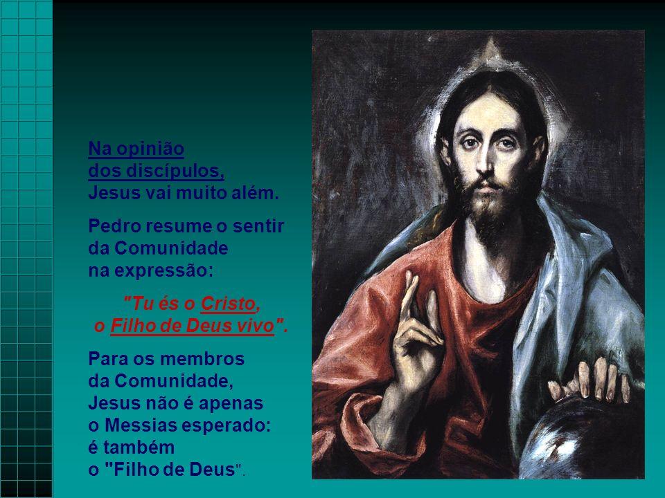 Na opinião dos discípulos, Jesus vai muito além. Pedro resume o sentir da Comunidade na expressão: