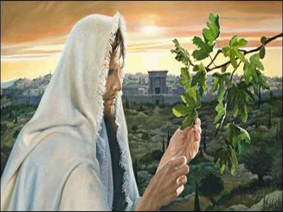 Esse Servo é JESUS, que pede uma nova chance para seu povo,