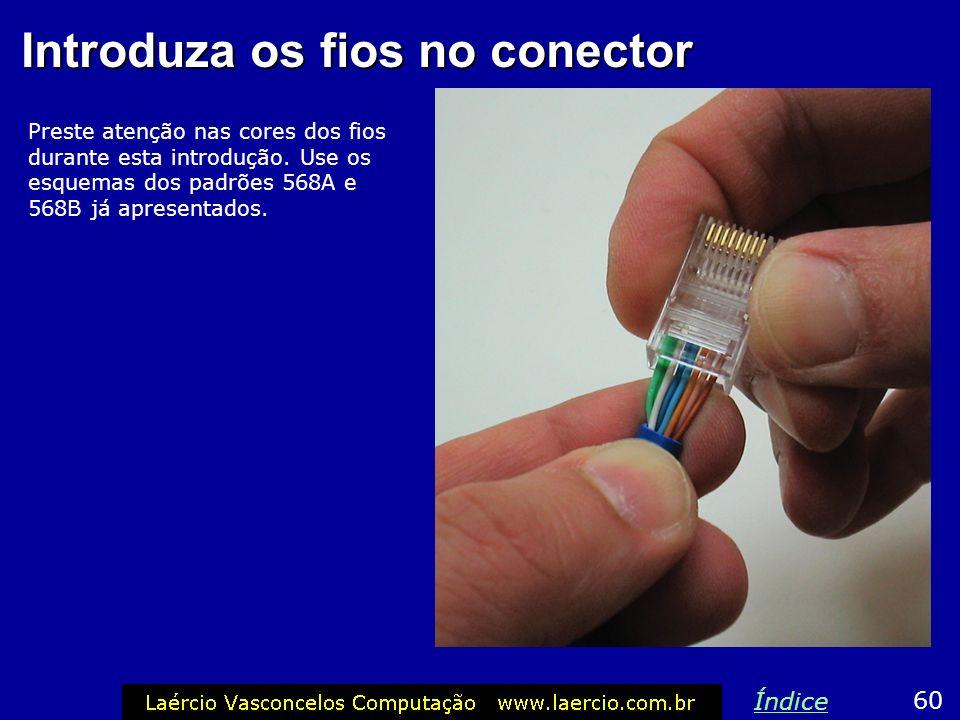 Introduza os fios no conector