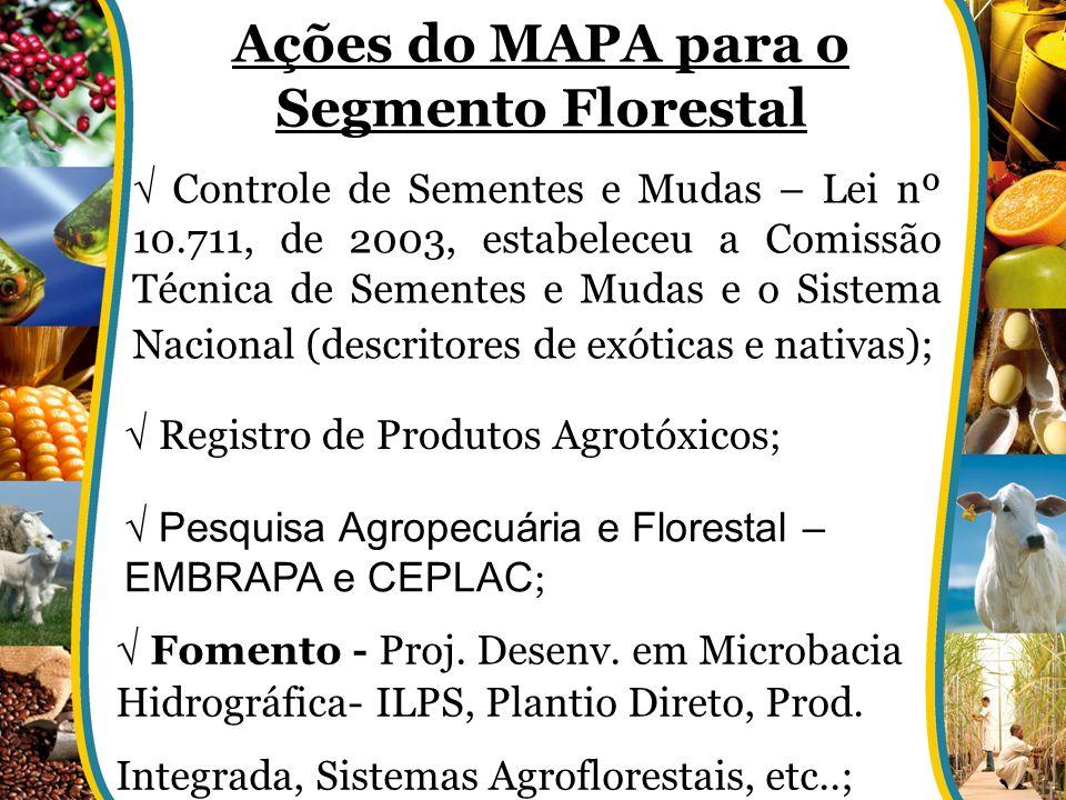 Ações do MAPA para o Segmento Florestal