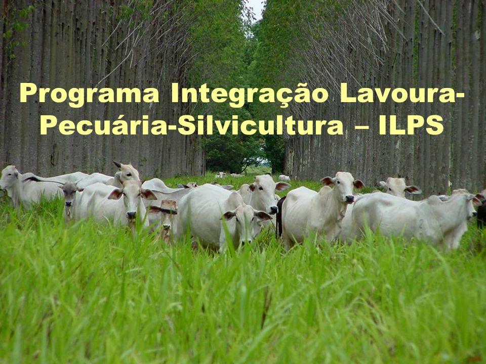 Programa Integração Lavoura-Pecuária-Silvicultura – ILPS