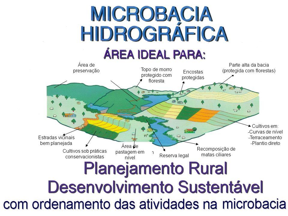 Área de preservação permanente Parte alta da bacia
