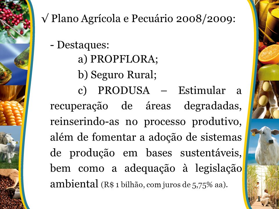 √ Plano Agrícola e Pecuário 2008/2009: