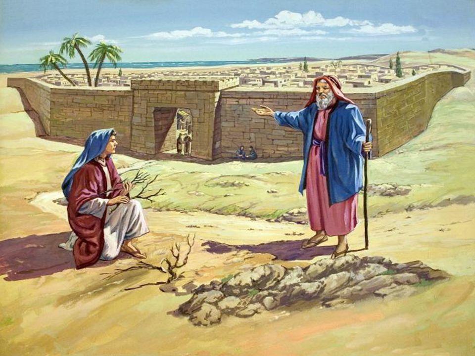 Na 1ª Leitura, temos a Viúva de Sarepta: (1Rs 17,17-24)