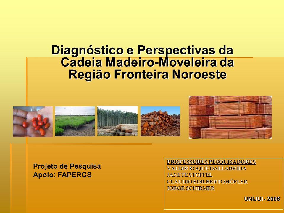 Diagnóstico e Perspectivas da Cadeia Madeiro-Moveleira da Região Fronteira Noroeste