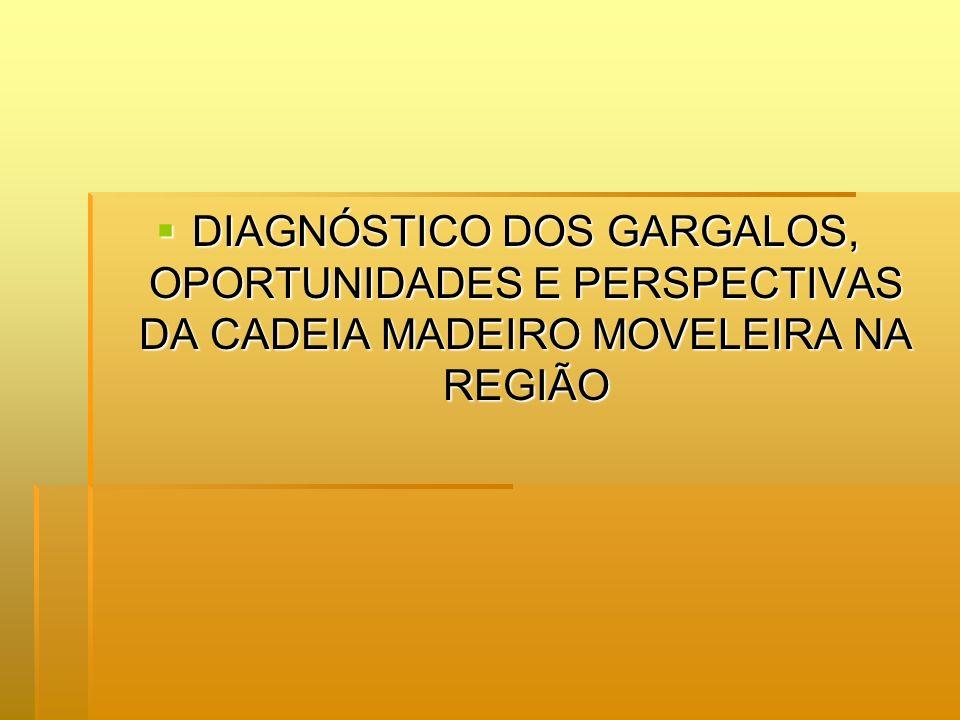 DIAGNÓSTICO DOS GARGALOS, OPORTUNIDADES E PERSPECTIVAS DA CADEIA MADEIRO MOVELEIRA NA REGIÃO