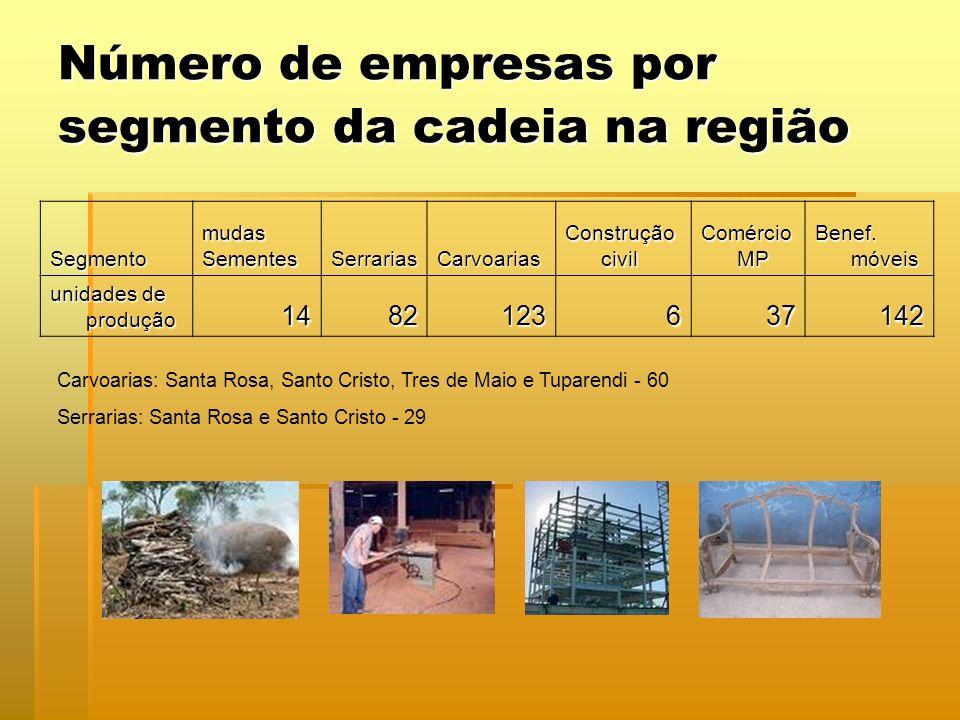 Número de empresas por segmento da cadeia na região