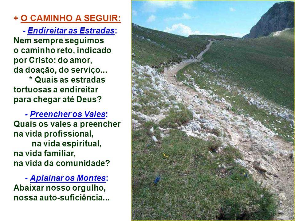 + O CAMINHO A SEGUIR: