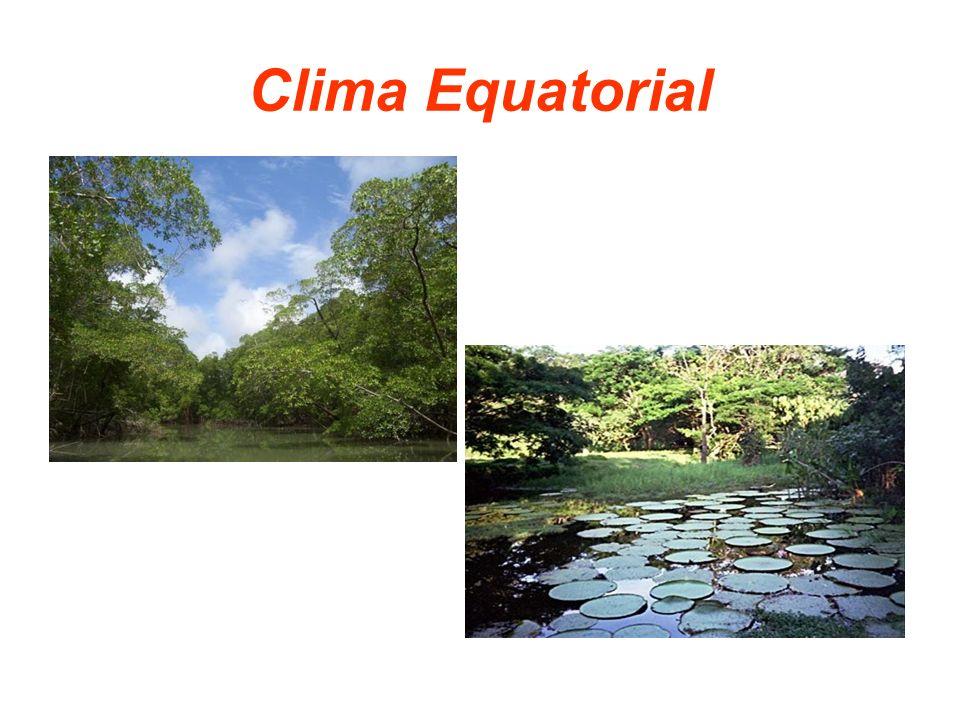 Clima Equatorial
