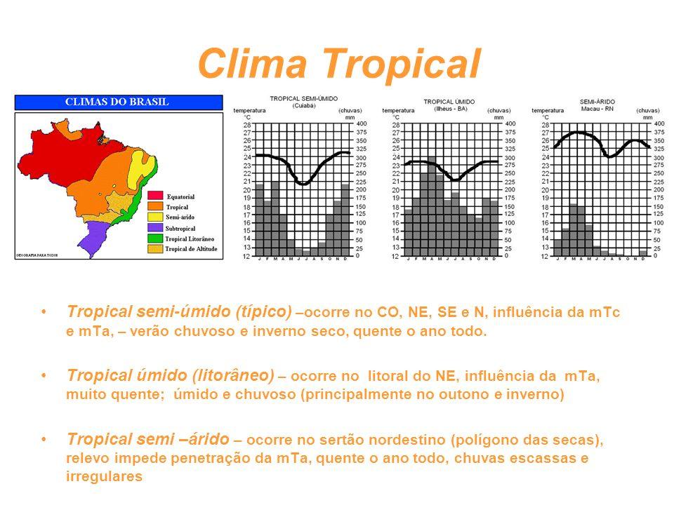 Clima Tropical Tropical semi-úmido (típico) –ocorre no CO, NE, SE e N, influência da mTc e mTa, – verão chuvoso e inverno seco, quente o ano todo.