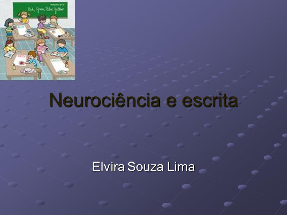 Neurociência e escrita