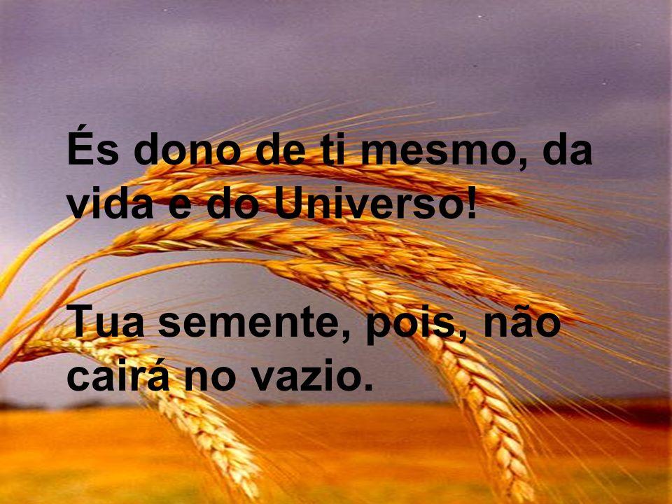 És dono de ti mesmo, da vida e do Universo!