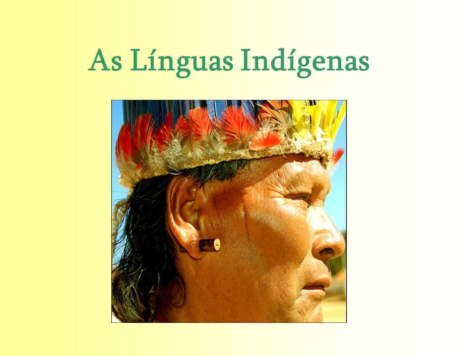 As Línguas Indígenas Raul