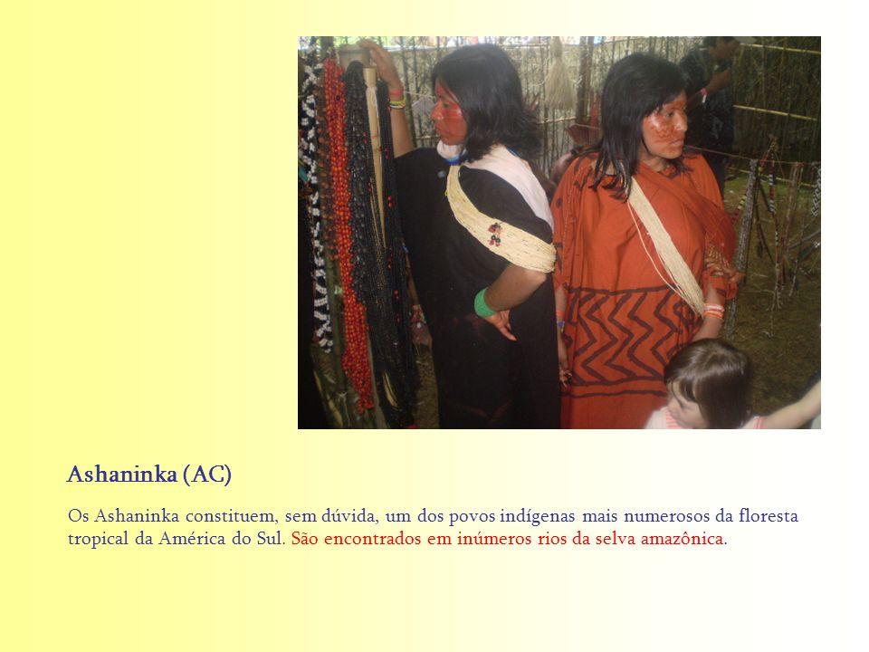 Ashaninka (AC)