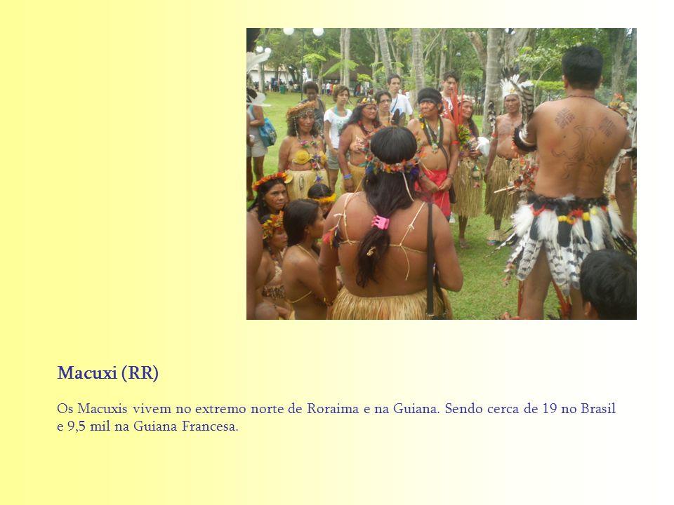 Macuxi (RR) Os Macuxis vivem no extremo norte de Roraima e na Guiana.