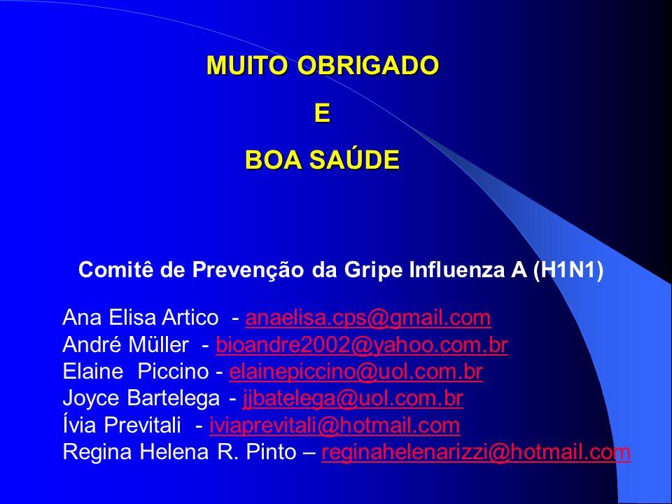 Comitê de Prevenção da Gripe Influenza A (H1N1)