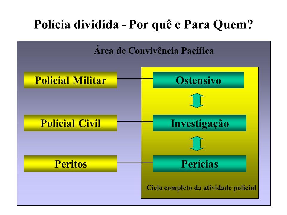 Polícia dividida - Por quê e Para Quem