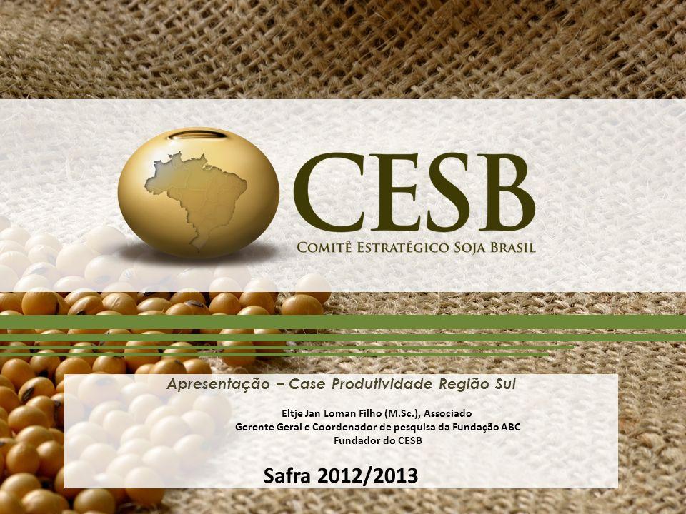 Safra 2012/2013 Apresentação – Case Produtividade Região Sul
