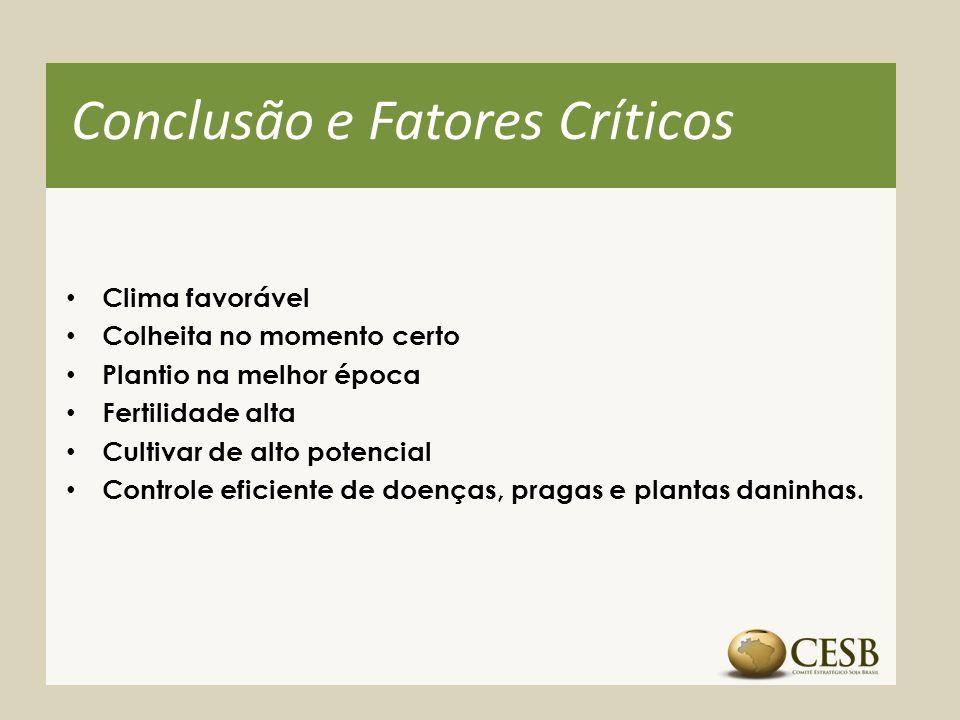 Conclusão e Fatores Críticos