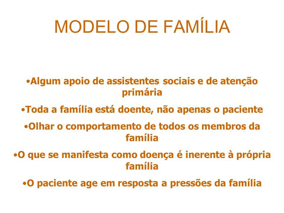 MODELO DE FAMÍLIA Algum apoio de assistentes sociais e de atenção primária. Toda a família está doente, não apenas o paciente.