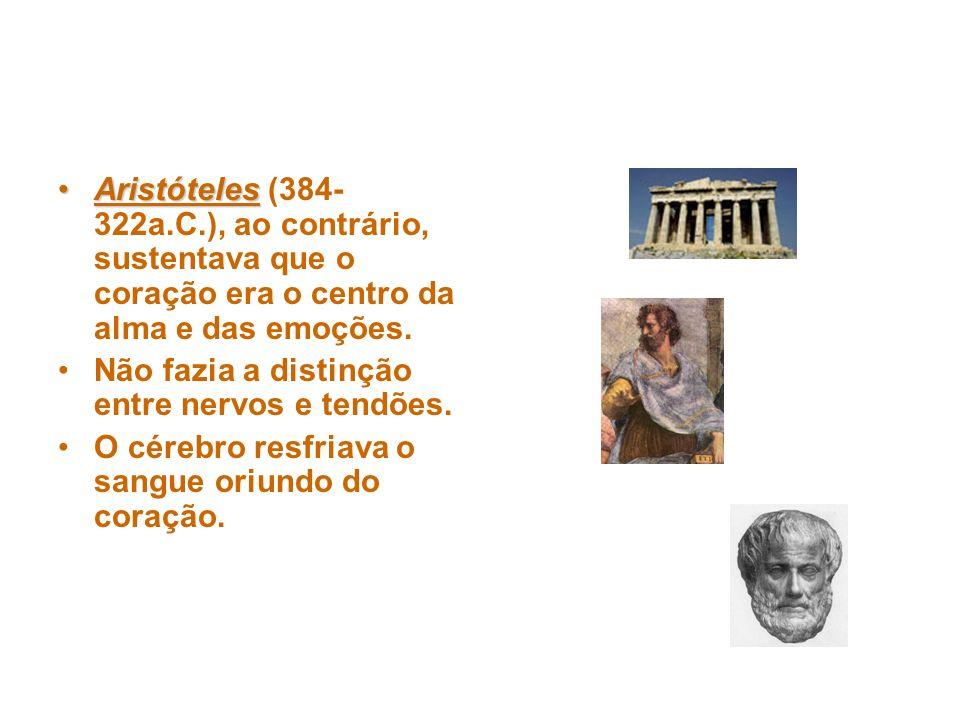 Aristóteles (384-322a.C.), ao contrário, sustentava que o coração era o centro da alma e das emoções.