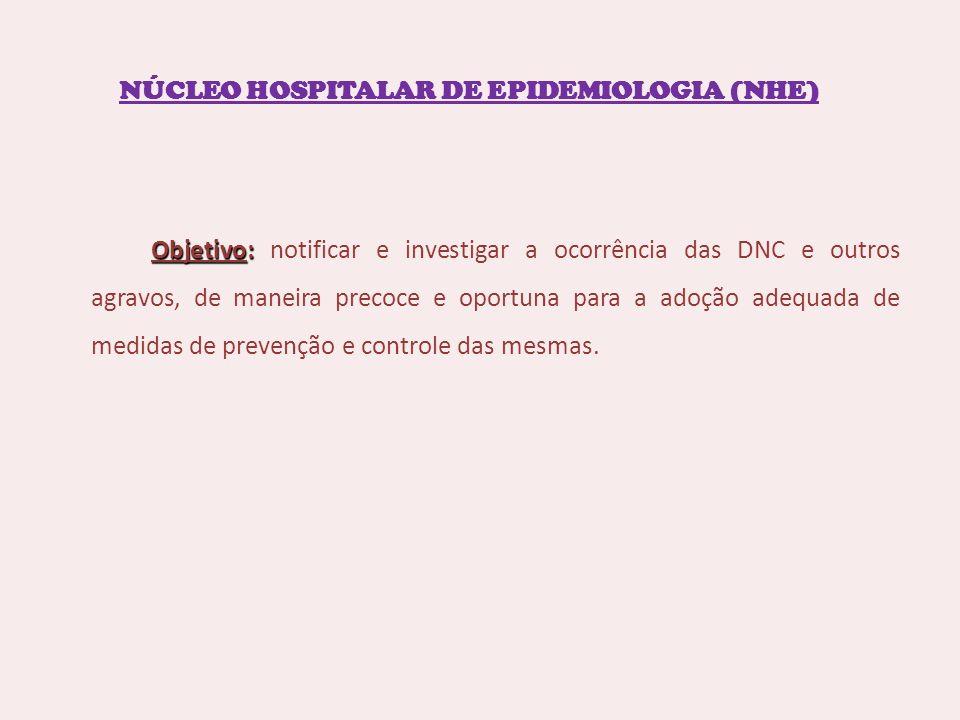NÚCLEO HOSPITALAR DE EPIDEMIOLOGIA (NHE)