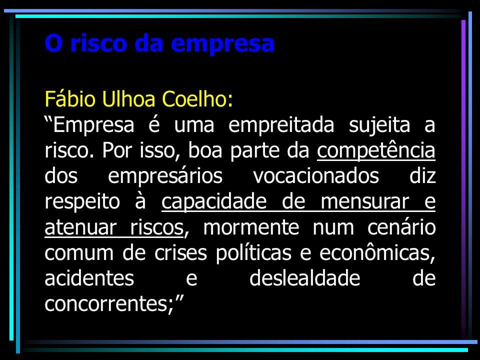 O risco da empresa Fábio Ulhoa Coelho: