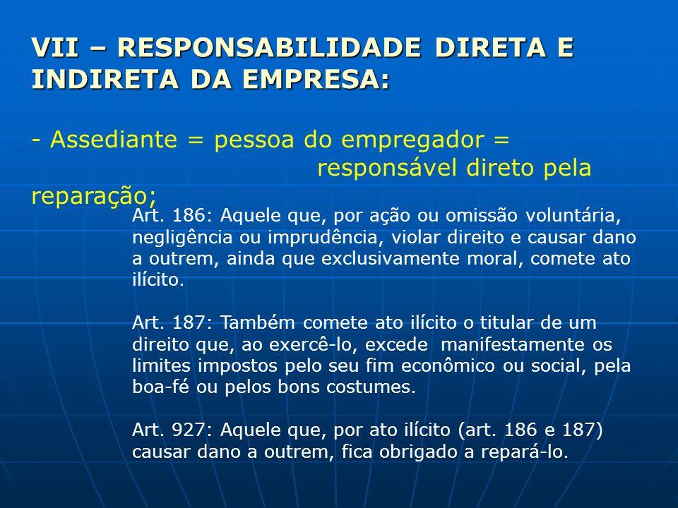 VII – RESPONSABILIDADE DIRETA E INDIRETA DA EMPRESA: