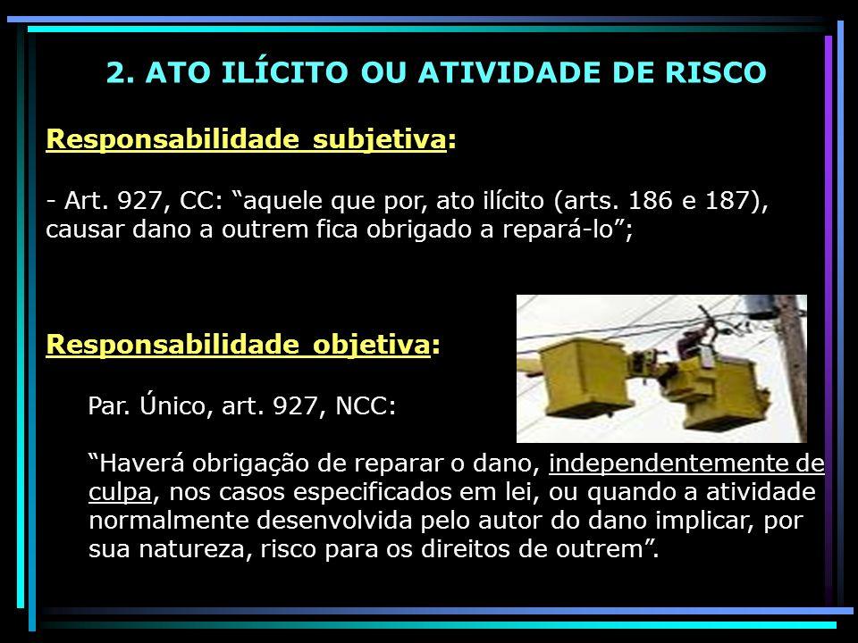 2. ATO ILÍCITO OU ATIVIDADE DE RISCO