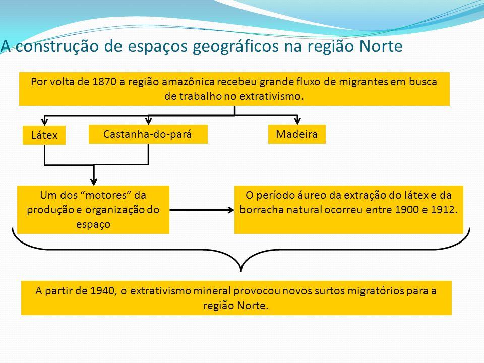 A construção de espaços geográficos na região Norte