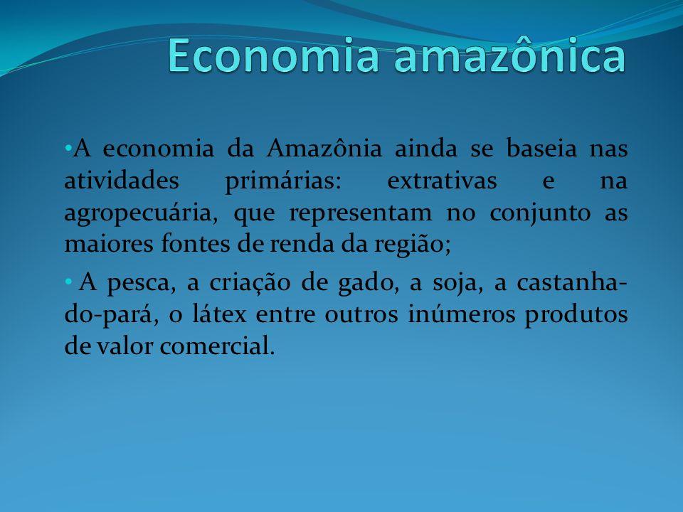 Economia amazônica