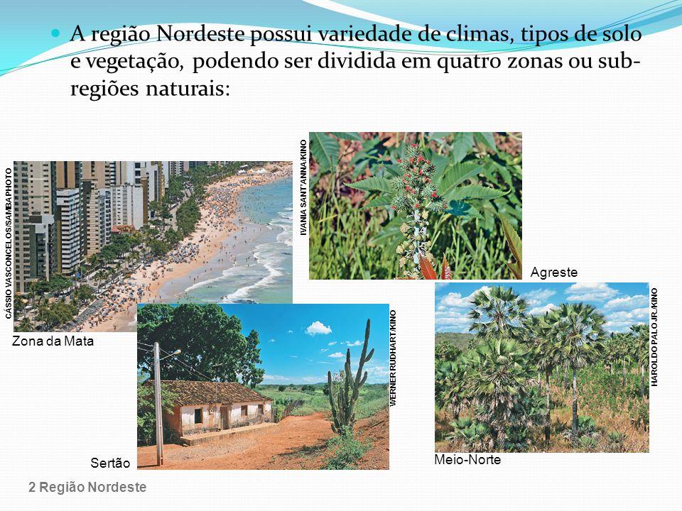 IVANIA SANT'ANNA/KINO CÁSSIO VASCONCELOS/SAMBA PHOTO