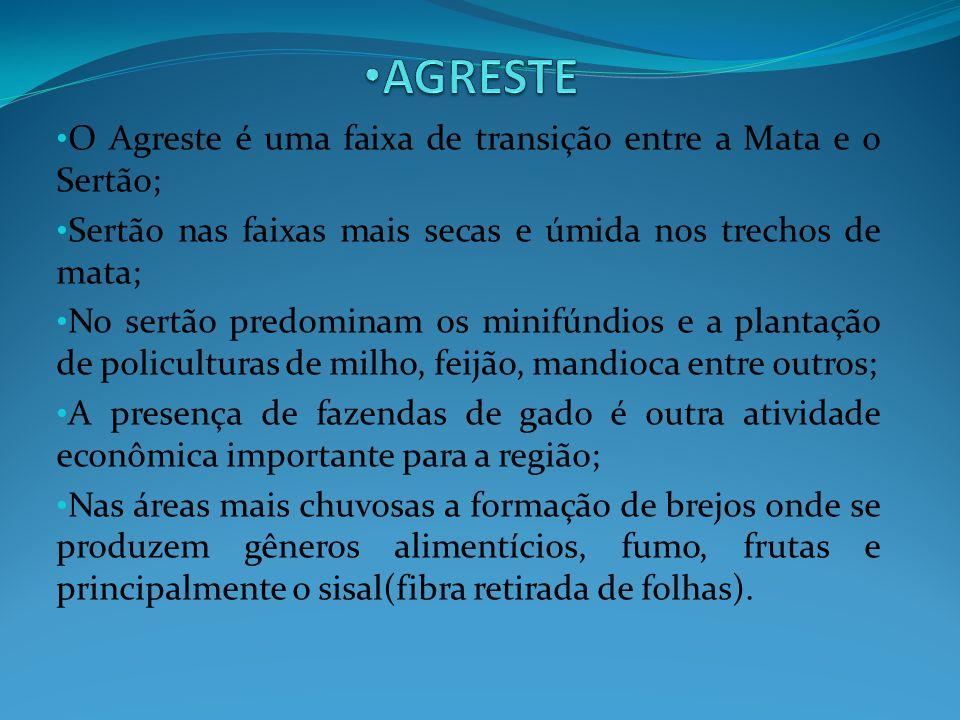 AGRESTE O Agreste é uma faixa de transição entre a Mata e o Sertão;