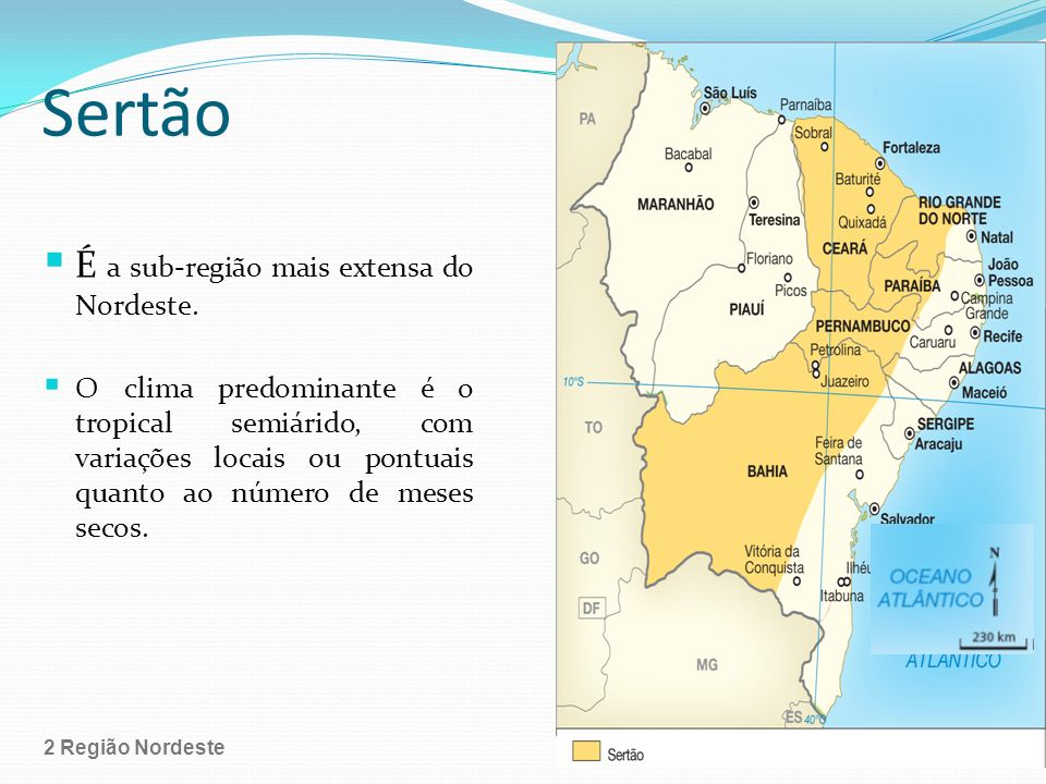 Sertão É a sub-região mais extensa do Nordeste.