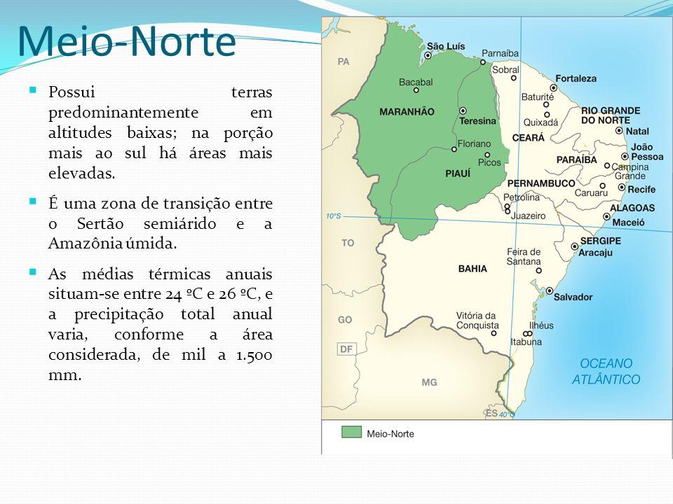 Meio-Norte Possui terras predominantemente em altitudes baixas; na porção mais ao sul há áreas mais elevadas.