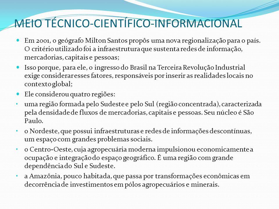 MEIO TÉCNICO-CIENTÍFICO-INFORMACIONAL