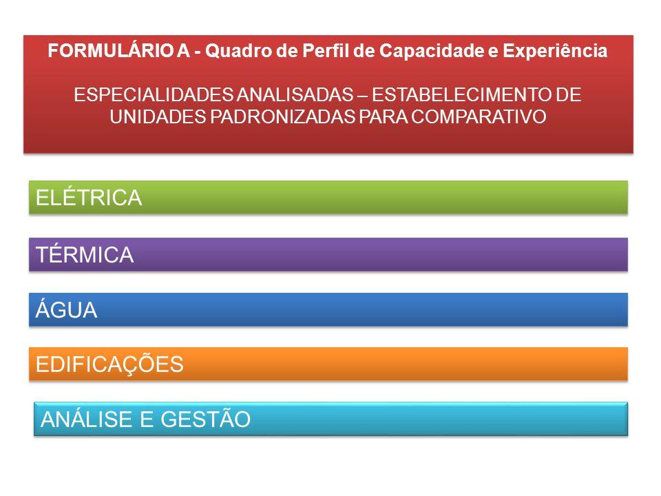 FORMULÁRIO A - Quadro de Perfil de Capacidade e Experiência