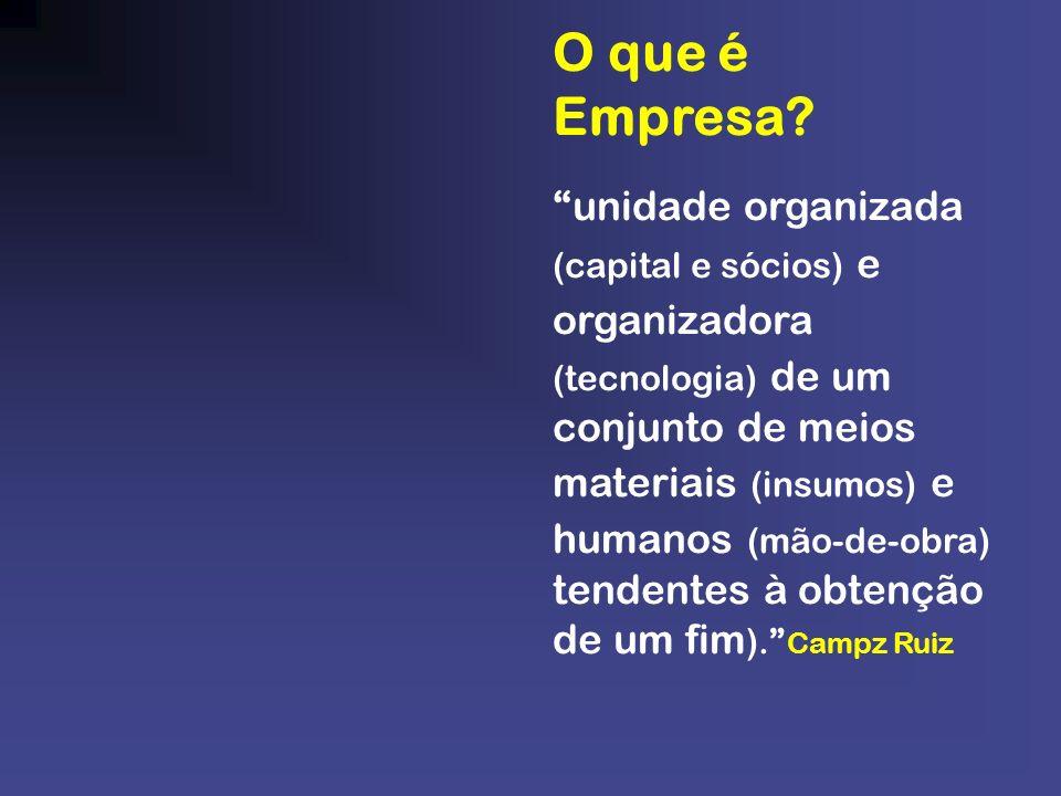 unidade organizada (capital e sócios) e