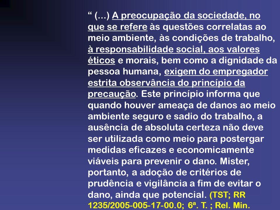 (...) A preocupação da sociedade, no que se refere às questões correlatas ao meio ambiente, às condições de trabalho, à responsabilidade social, aos valores éticos e morais, bem como a dignidade da pessoa humana, exigem do empregador estrita observância do princípio da precaução.