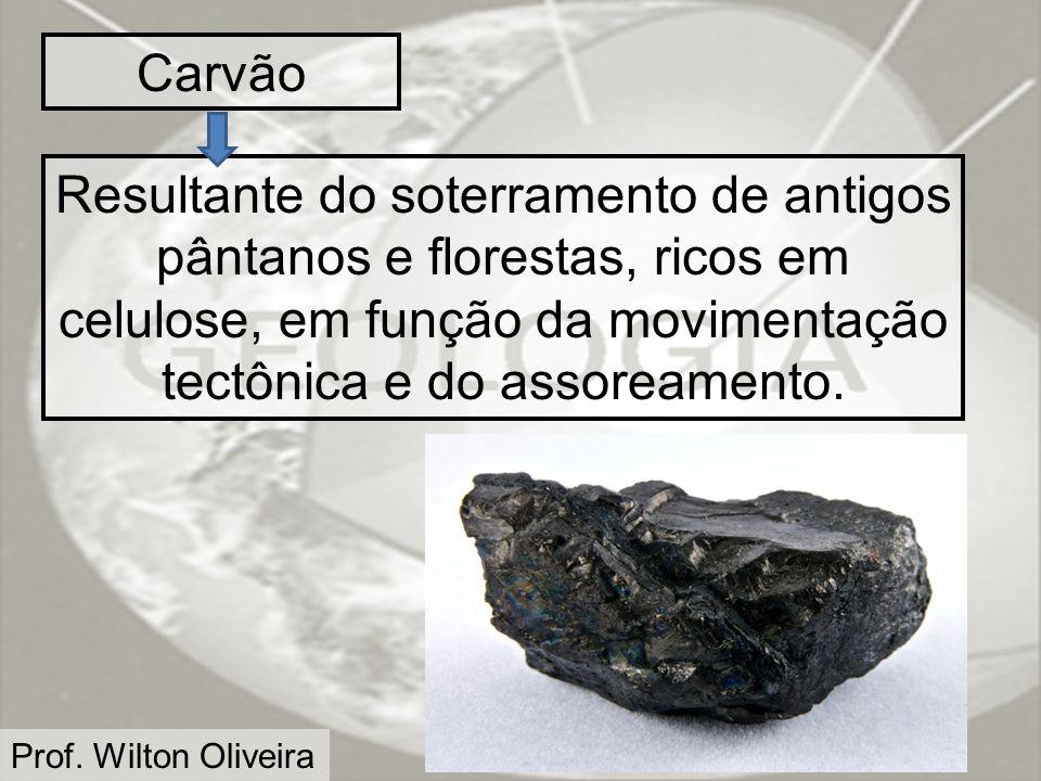 Carvão Resultante do soterramento de antigos pântanos e florestas, ricos em celulose, em função da movimentação tectônica e do assoreamento.