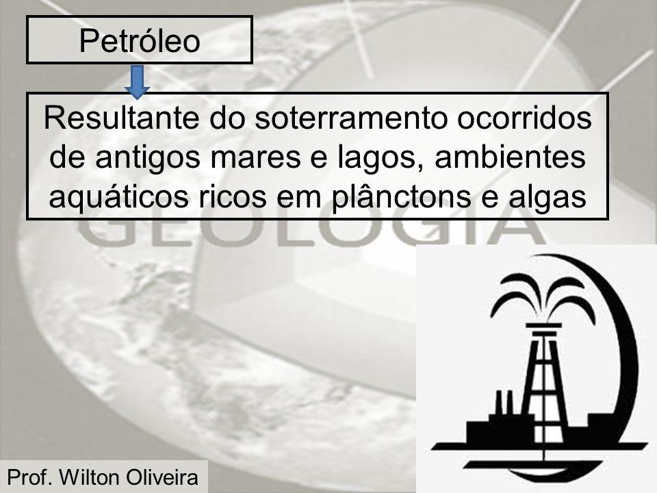 Petróleo Resultante do soterramento ocorridos de antigos mares e lagos, ambientes aquáticos ricos em plânctons e algas.