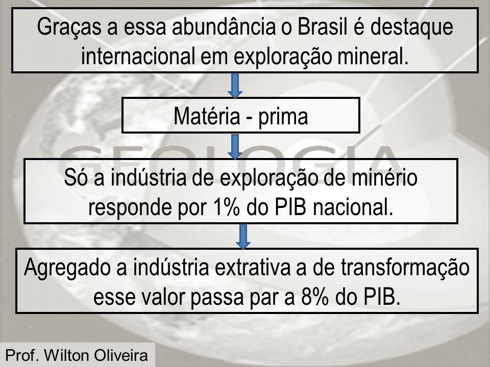 Graças a essa abundância o Brasil é destaque internacional em exploração mineral.
