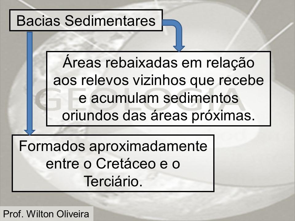 Formados aproximadamente entre o Cretáceo e o Terciário.